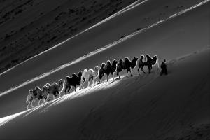 PSA HM Ribbons - Mei Zeng (China)Long Journey