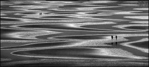 PhotoVivo Gold Medal - Miranda Siu (Canada)A Stroll Along The Silver Shores