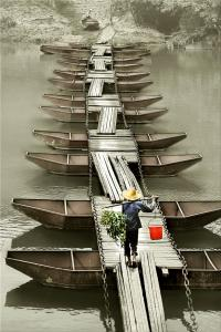 KBIPA Merit Award - Ruiyuan Chen (China)Pontoon Bridge