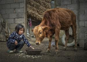PhotoVivo Honor Mention - Youxia Huang (China)Buddy