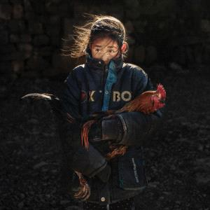 PhotoVivo Gold Medal - Zhesheng Zhuang (China)  Stay