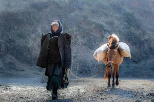 PhotoVivo Honor Mention - Pinguan Zheng (China)  Coming Back