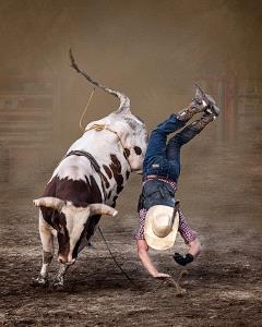 PSA HM Ribbons - Ronald Wilson (USA)  Bull Rider 4