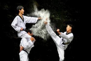KBIPC Merit Award - Soon Seng Leong (Malaysia)  Kung Fu Kick 889