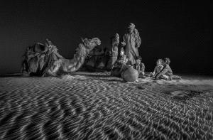 PhotoVivo Gold Medal - Zhong Chen (China)  Night Class Of Desert Family 5