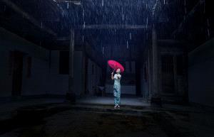 KBIPC Merit Award - Guiyang Zeng (China)  Listen To The Rain