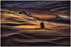 KBIPC Merit Award - Thomas Lang (USA)  Palouse Farmhouse