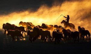 PhotoVivo Honor Mention - Muyang Zhou (China)  Mugui Red Sunset