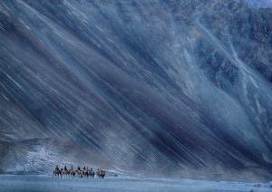 PSA HM Ribbons - Sounak Banerjee (India)  Blue Mountains