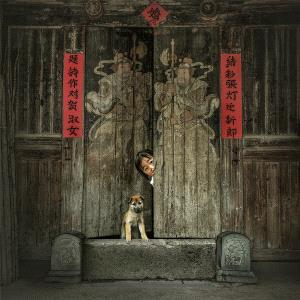 PhotoVivo Bronze Medal - Bin Yu (China)  Shy