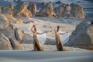 PhotoVivo Gold Medal - Deying Huang (China)  Sisters In Desert 3