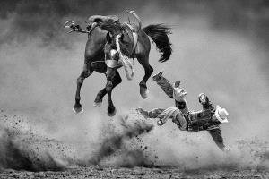 APU Gold Medal - Kam Chiu Tam (Canada)  The Fury Horse