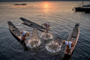 APU Honor Mention e-certificate - Kam Chiu Tam (Canada)  Burma Fishing