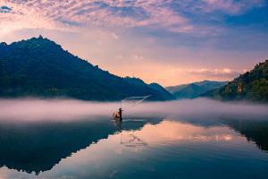 APU Honor Mention e-certificate - Xiaoping Chang (China)  Fish Alone 4