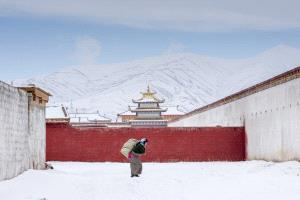 KBIPC Merit Award e-certificate - Wen Zhong (China)  Return In Snow