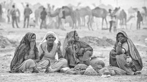 PhotoVivo Gold Medal - Tan Tong Toon (Malaysia)  Pushkar Gypsies_2