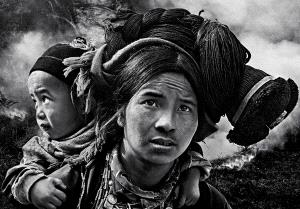 PhotoVivo Gold Medal - Dao Tien Dat (Vietnam)  Deeply Worry
