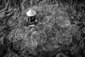 APAS Gold Medal - Chin Leong Teo (Singapore)  Green Fishing Nets Bw 2