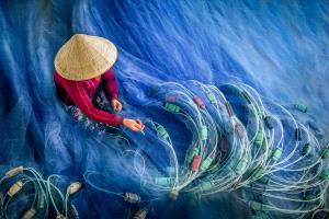 ICPE Honor Mention e-certificate - Chin Leong Teo (Singapore)  Blue Fishing Nets 2