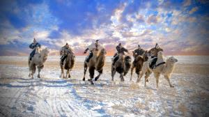 ICPE Honor Mention e-certificate - Hugo Chan (USA)  Camel Racing