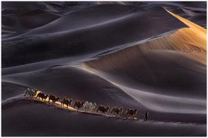 ICPE Honor Mention e-certificate - Thomas Lang (USA)  Desert Light