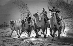 KBIPC Merit Award e-certificate - Subrata Bysack (India)  Three Camel Riders